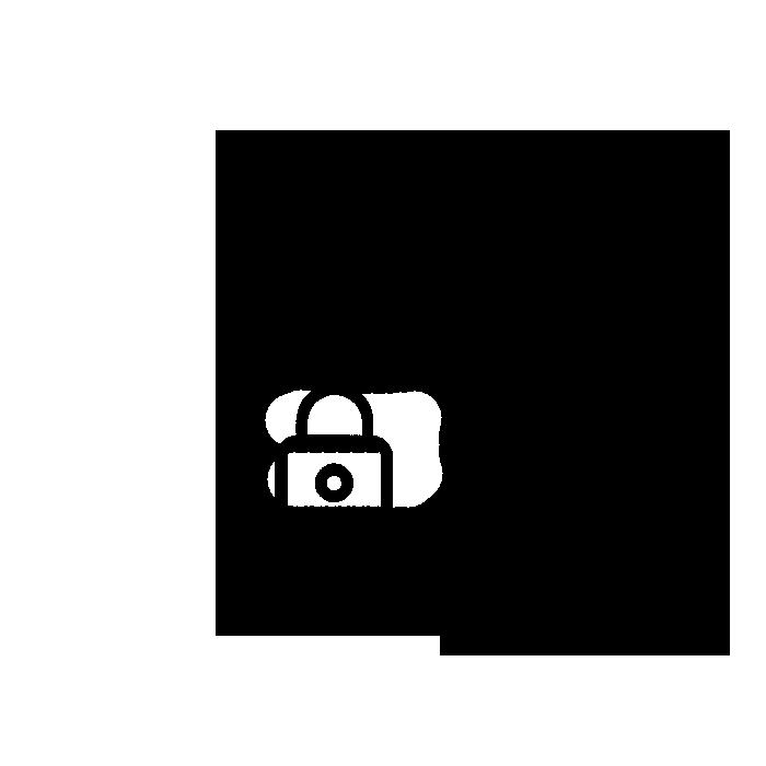 Grafik Dokument mit Schloss und Wappen mit Sternen