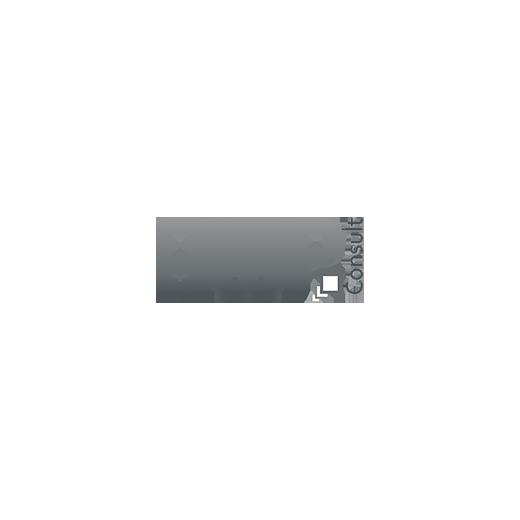 Referenzlogo von AWP Consult GmbH