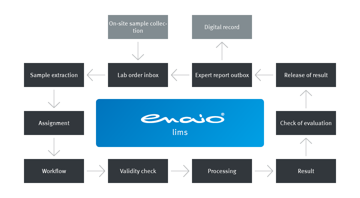 Info graphic enaio® lims process