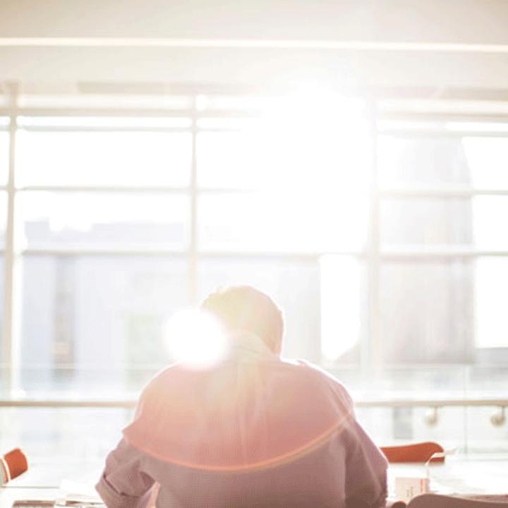 Rückenansicht von arbeitendem Mann vor lichtdurchflutetem Fenster