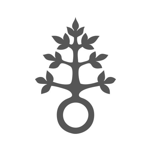 Logo Dominikus Ringeisen Werk