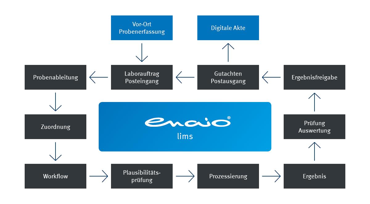 Infografik enaio® lims Probenprozessierung