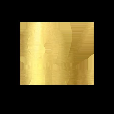 Vimpex Logo