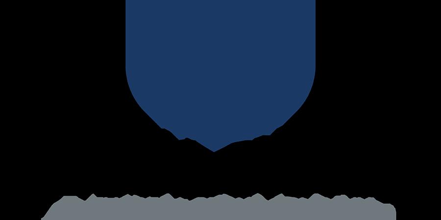 Optimal Systems Logo